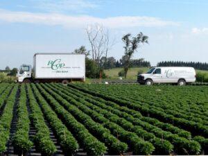 rcop-truck-and-mum-field
